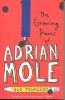 TOWNSEND, SUE : The Growing Pains of Adrian Mole / Puffin, 2007